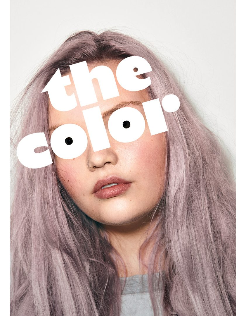The Color hair coloring salon